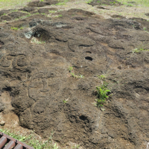 Carvings near Moai Quarry and Tongeriki, Easter Island, Island de Pacua, Chile, South America